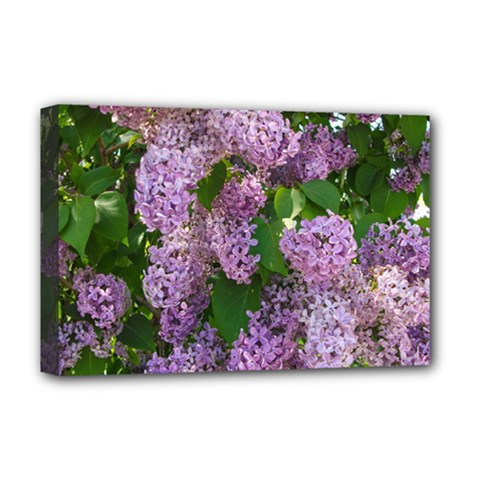 Lilacs 2 Deluxe Canvas 18  X 12   by dawnsiegler