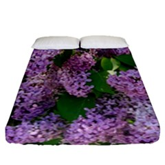 Lilacs 2 Fitted Sheet (queen Size) by dawnsiegler