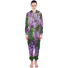 Lilacs 2 Hooded Jumpsuit (ladies)