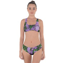 Lilacs 2 Criss Cross Bikini Set by dawnsiegler