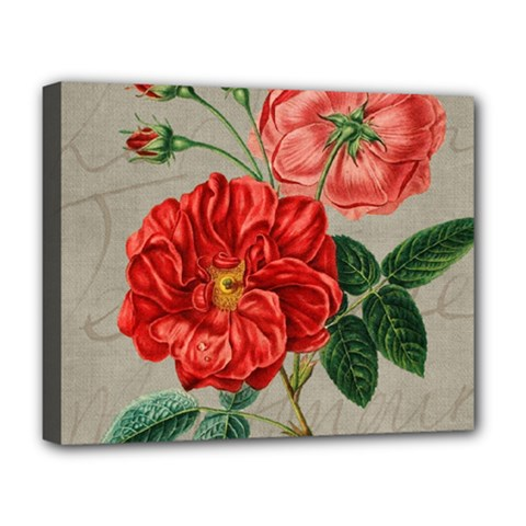 Flower Floral Background Red Rose Deluxe Canvas 20  X 16
