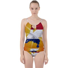 Holland Country Nation Netherlands Flag Cut Out Top Tankini Set