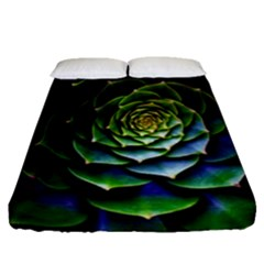 Nature Desktop Flora Color Pattern Fitted Sheet (queen Size)