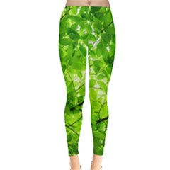 Green Wood The Leaves Twig Leaf Texture Leggings  by Nexatart