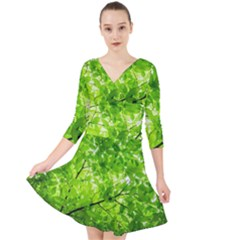 Green Wood The Leaves Twig Leaf Texture Quarter Sleeve Front Wrap Dress
