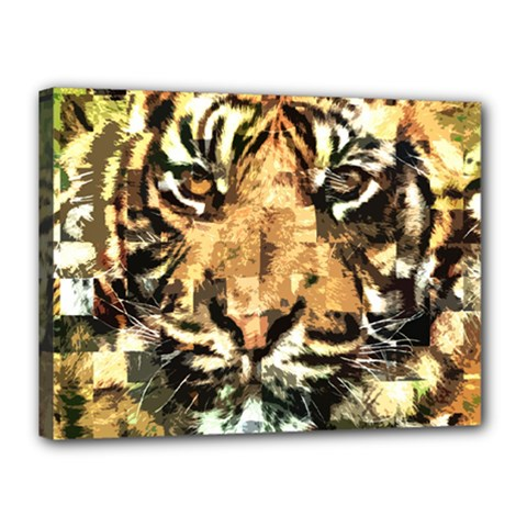 Tiger 1340039 Canvas 16  X 12  by 1iconexpressions