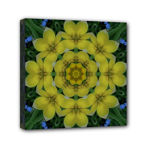 Fantasy Plumeria Decorative Real And Mandala Mini Canvas 6  X 6  by pepitasart