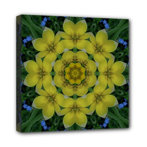 Fantasy Plumeria Decorative Real And Mandala Mini Canvas 8  X 8  by pepitasart