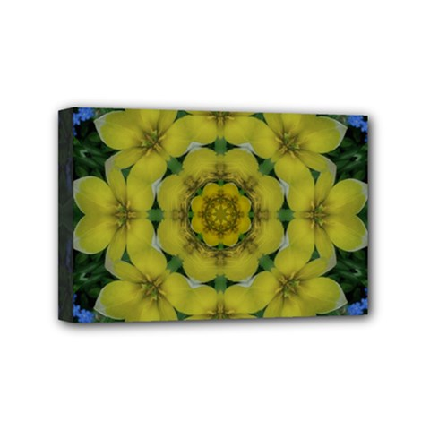 Fantasy Plumeria Decorative Real And Mandala Mini Canvas 6  X 4  by pepitasart