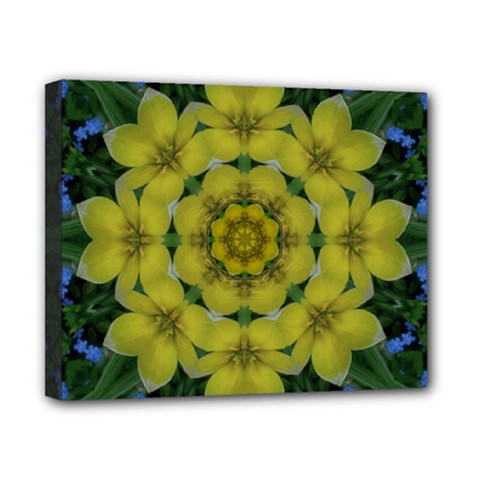 Fantasy Plumeria Decorative Real And Mandala Canvas 10  X 8  by pepitasart