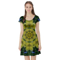 Fantasy Plumeria Decorative Real And Mandala Short Sleeve Skater Dress