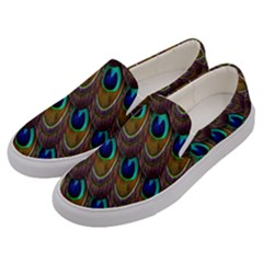 Peacock Feathers Bird Plumage Men s Canvas Slip Ons by Nexatart