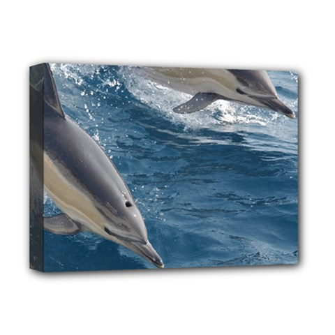 Dolphin 4 Deluxe Canvas 16  X 12   by trendistuff