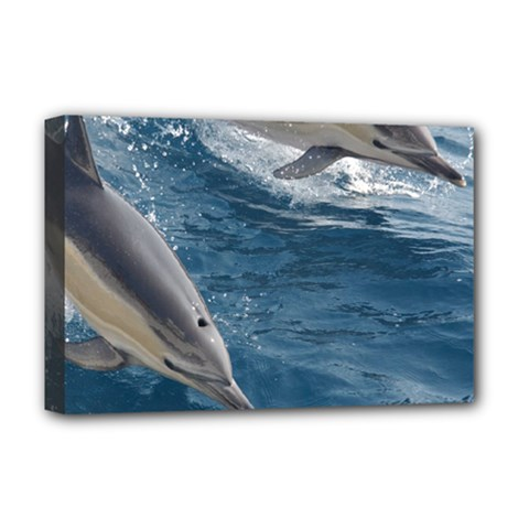 Dolphin 4 Deluxe Canvas 18  X 12   by trendistuff