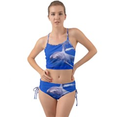 Great White Shark 4 Mini Tank Bikini Set by trendistuff