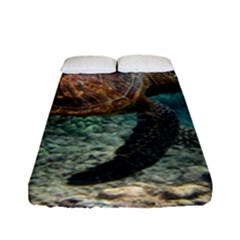 Sea Turtle 3 Fitted Sheet (full/ Double Size) by trendistuff