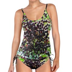 Elderberries Tankini Set