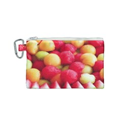 Melon Balls Canvas Cosmetic Bag (small) by trendistuff