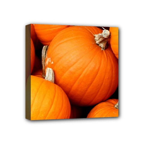 Pumpkins 1 Mini Canvas 4  X 4  by trendistuff
