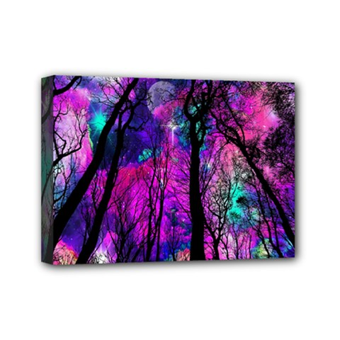 Magic Forest Mini Canvas 7  X 5  by augustinet