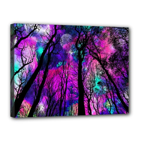 Magic Forest Canvas 16  X 12  by augustinet