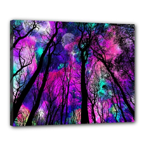 Magic Forest Canvas 20  X 16  by augustinet
