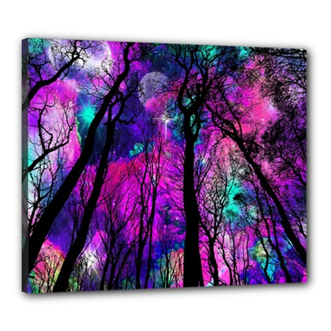 Magic Forest Canvas 24  X 20  by augustinet