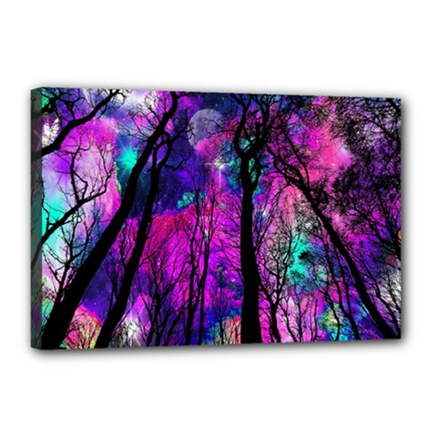 Magic Forest Canvas 18  X 12  by augustinet