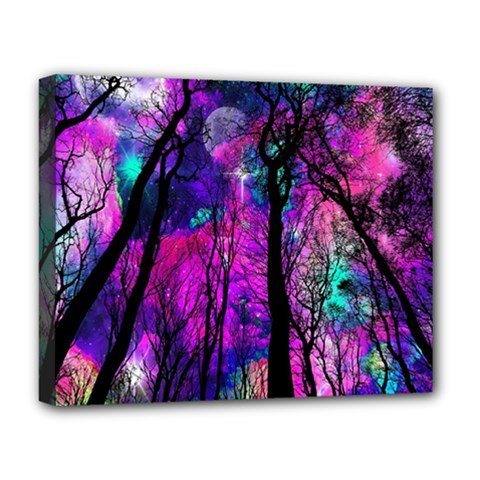 Magic Forest Deluxe Canvas 20  X 16   by augustinet
