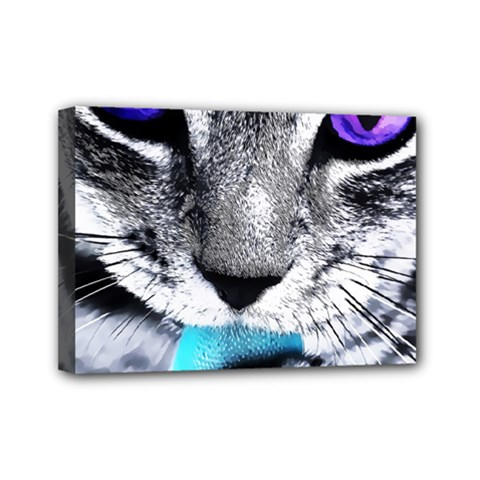 Purple Eyes Cat Mini Canvas 7  X 5  by augustinet