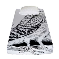 Animal Bird Forest Nature Owl Fitted Sheet (single Size) by Nexatart