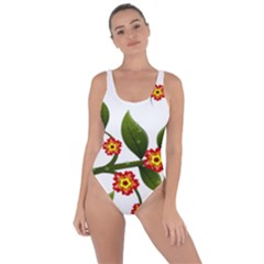 Flower Branch Nature Leaves Plant Bring Sexy Back Swimsuit