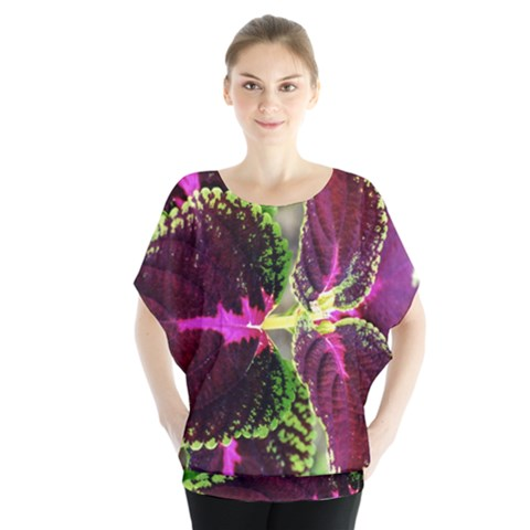 Plant Purple Green Leaves Garden Blouse by Nexatart
