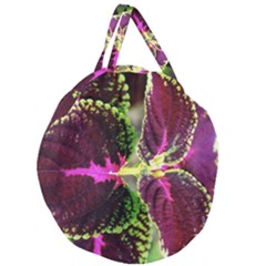 Plant Purple Green Leaves Garden Giant Round Zipper Tote