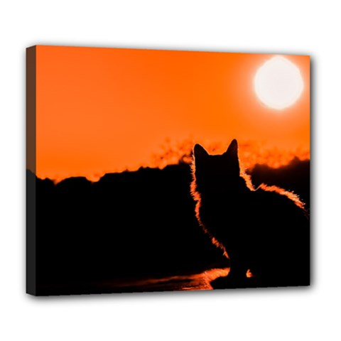 Sunset Cat Shadows Silhouettes Deluxe Canvas 24  X 20