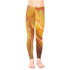 Flowers Leaves Leaf Floral Summer Kids  Legging