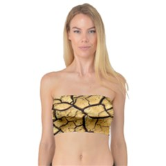 Dry Ground Bandeau Top
