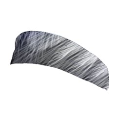 Feather Graphic Design Background Stretchable Headband by Sapixe