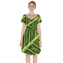 Leaf Dark Green Short Sleeve Bardot Dress