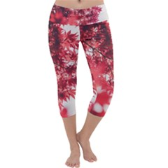Maple Leaves Red Autumn Fall Capri Yoga Leggings by Sapixe