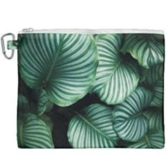 Tropical Florals Canvas Cosmetic Bag (xxxl) by goljakoff