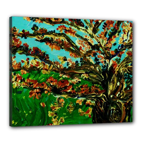 Coral Tree 1 Canvas 24  X 20  by bestdesignintheworld