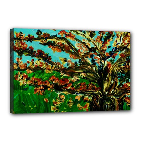 Coral Tree 1 Canvas 18  X 12  by bestdesignintheworld