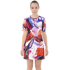Cabin In The Mountain 2 Sixties Short Sleeve Mini Dress