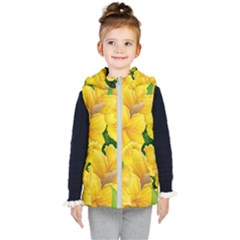 Springs First Arrivals Kid s Hooded Puffer Vest