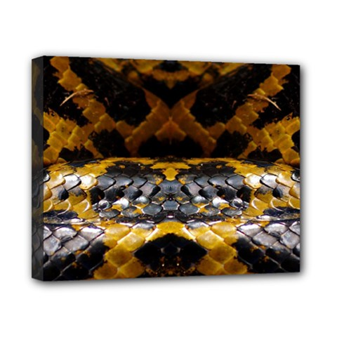 Textures Snake Skin Patterns Canvas 10  X 8  by Sapixe