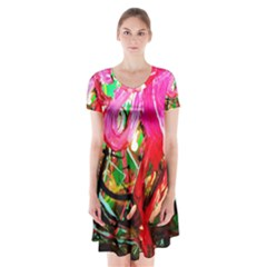 Dscf2035   Flamingo On A Chad Lake Short Sleeve V Neck Flare Dress