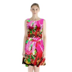 Dscf2035   Flamingo On A Chad Lake Sleeveless Waist Tie Chiffon Dress
