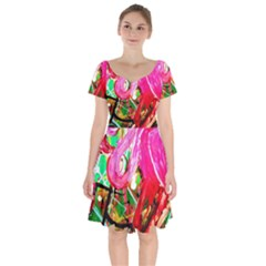 Dscf2035   Flamingo On A Chad Lake Short Sleeve Bardot Dress