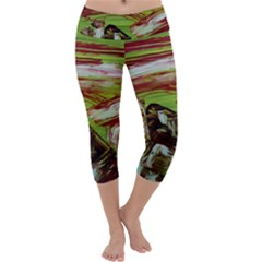 Dscf3217   Parthenon Capri Yoga Leggings